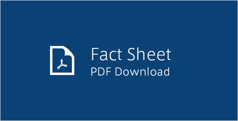 Fact Sheet PDF Download